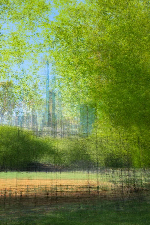 NY-Central-Park-3-Lonicer-2-copy
