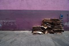 LA-Wall-Lonicer
